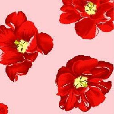 生毛工房 うもうこうぼう 花柄サテンプリント 大きめサイズ 綿100%/50×100cm/レッド