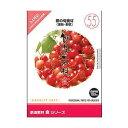 イメージランド創造素材 食 55 春の旬食材 果物・野菜 HYB/CD