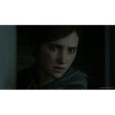 The Last of Us Part II(ラスト・オブ・アス パートII)/PS4/PCJS66061