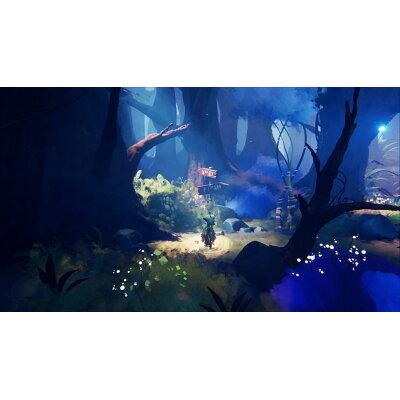 Dreams Universe(ドリームズ ユニバース)/PS4/PCJS66065/B 12才以上対象