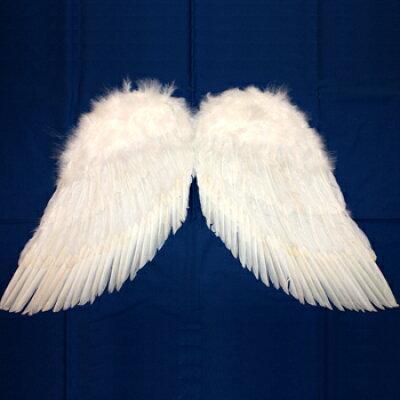 天使の翼 (LL)