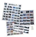 万丈 写真展示用ホルダー L用 210-005