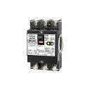 テンパール工業 漏電ブレーカー U53EC4030V