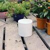 ホワイトポット丸型 Mサイズ 直径13cm×高さ13cm 底穴白 陶器鉢 柱 園芸 ガーデニング 8905460