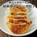 耀盛號 焼き餃子20 30個入 600g