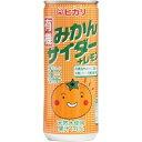 ヒカリ 有機みかんサイダー+レモン(250ml)