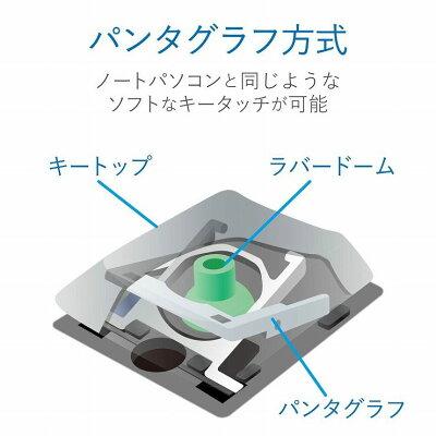 ELECOM 有線超薄型ミニキーボードTK-FCP096BK