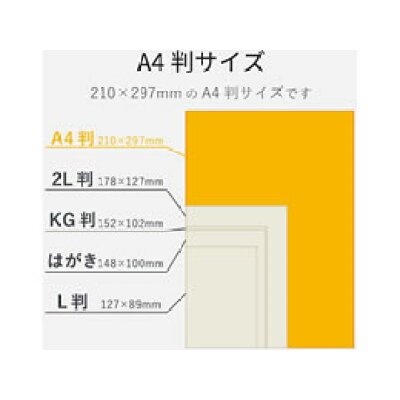 エレコム 光沢紙の最高峰 プラチナフォトペーパー EJK-QTNA4100(100枚入)