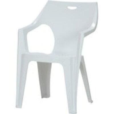 カラフルチェアー ガーデンファニチャー 肘付き椅子 ホワイト