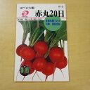 福花園 赤丸20日大根