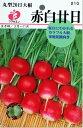 福花園 丸型赤白20日大根
