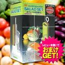 インストール 野菜調理器 サラダセット