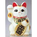 常滑焼 梅月 8号白小判付招猫 8406