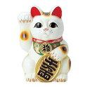 常滑焼 梅月 10号白小判付招猫 8407