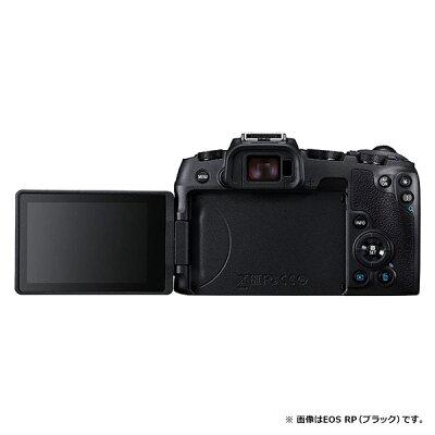 Canon EOS RP GOLD ミラーレス一眼 マウントアダプターSPキット