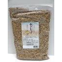 香川県産 讃岐もち麦 ダイシモチ 1kg