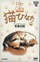Windows3.1/Mac漢字Talk7.1以降 CDソフト A Day of Cats vol.2 猫ひなた