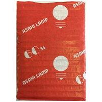 ASAHI LAMP GW110V-60W/70