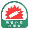 TOYO トーヨーセフティ ヘルメット用シール No.68-030