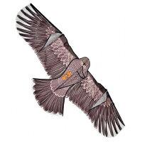 鳥追いカイト鷹