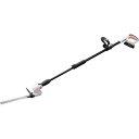 アイリスオーヤマ 充電式ポールヘッジトリマー ホワイト JPHT254