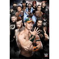 ポスター WWE 2016 SP-1349