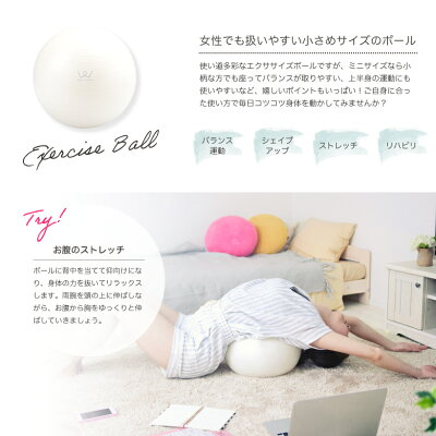 アルインコ エクササイズボール 30cm WBN030(1個)