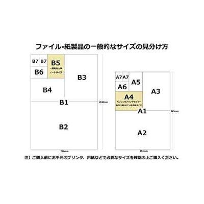 サンワサプライ インクジェット厚紙 A4 JP-EM1NA4N-50(50枚入)