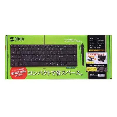 英語配列USBスリムキーボード/テンキー付き SKB-E2U(1コ入)
