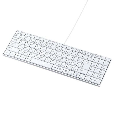 SANWA SUPPLY USBスリムキーボード SKB-SL17WN