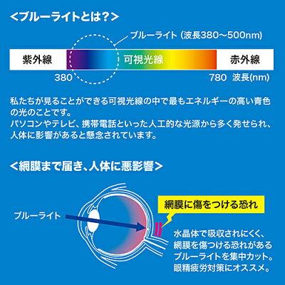 iPad Pro用ブルーライトカット液晶保護指紋防止光沢フィルム LCD-IPPBC(1枚入)