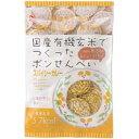 アリモト 有機玄米使用ポンせん スパイシーカレー味(60g)
