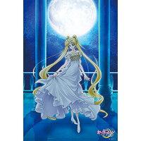 ジグソーパズル 美少女戦士セーラームーンCrystal Princess serenity 1000ピース 1000-535 エンスカイ