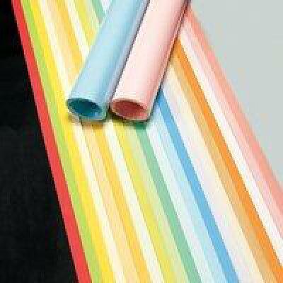 菅公工業 色模造紙 中厚 20枚 タ946 さくら