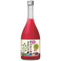 合同酒精 鍛高譚の梅酒