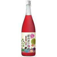 合同酒精 鍛高譚の梅酒 一升瓶