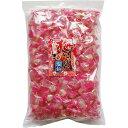 紀州産南高梅使用 梅いっぱい塩飴 1kg