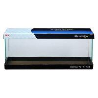 グラステリアスリム600水槽