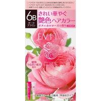 エビータ トリートメントヘアカラー6B ダークブラウン(医薬部外品)(45g+45g)