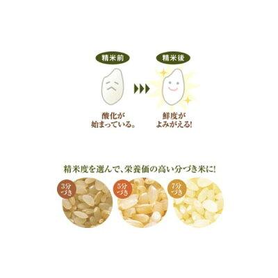 象印 家庭用無洗米精米機 つきたて風味 BT-AF05-HA(1台)