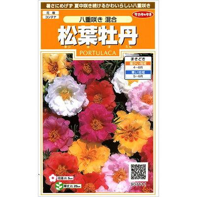 サカタのタネ 実咲花7611 松葉牡丹 八重咲き混合 00907611