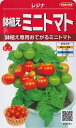 ミニトマト(鉢植え用) レジナ 種子 (サカタのタネ)