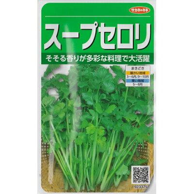 スープセルリー【中国野菜種】