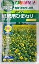 (ヒマワリの種)緑肥用ひまわり 60ml