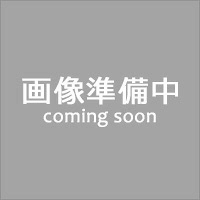 天狗ハム 加賀白山ホワイトロースハム&ボンレスハムセット 1セット