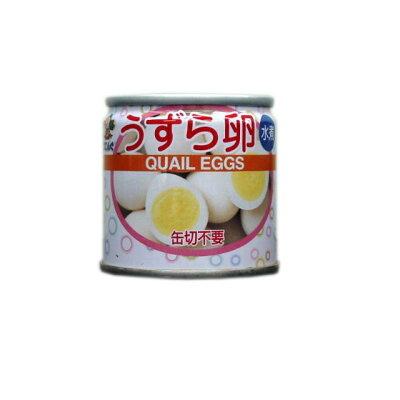 天狗缶詰 うずら卵コテングJAS SS2/48