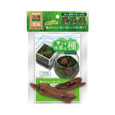 ニッソー 育てる水草の種ストレートヘアー&流木 1個