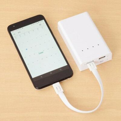 エツミ キーホルダーケーブル Micro USB ホワイト VE-6851(1コ入)