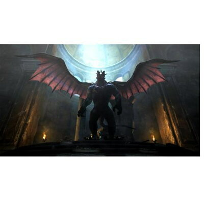 Dragon's Dogma: Dark Arisen(ドラゴンズドグマ:ダークアリズン)/Switch/HACPAPTYA/D 17才以上対象