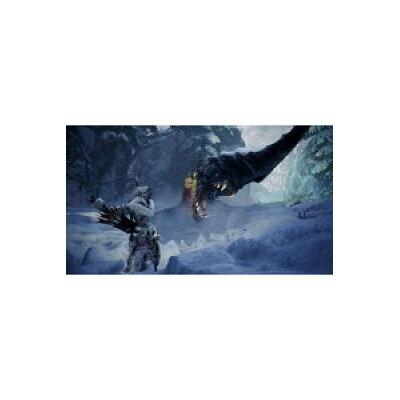 モンスターハンターワールド:アイスボーン マスターエディション/PS4/PLJM16446/C 15才以上対象